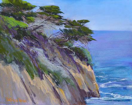 Point Lobos Vista by Patricia Rose Ford