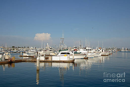 Point Loma Marina by Russell Christie