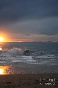 Ian Donley - Point Mugu 1-9-10 Sun Setting With Surf