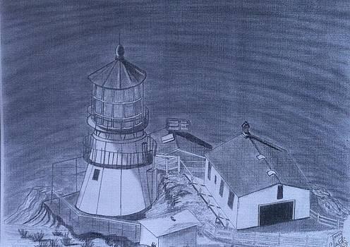 Point Reyes Lighthouse by Tony Clark