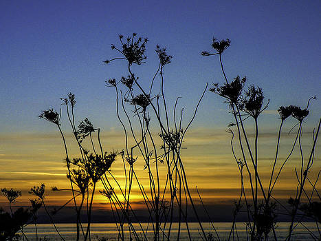 Point Roberts Sunset by Rod Sterling