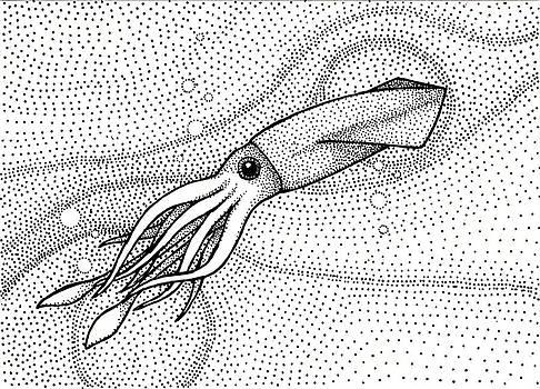 Pointilism Squid by Sheryl Westleigh