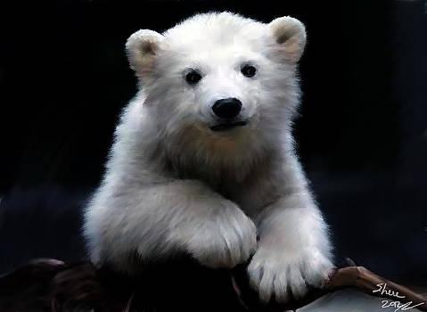 Shere Crossman - Polar Baby