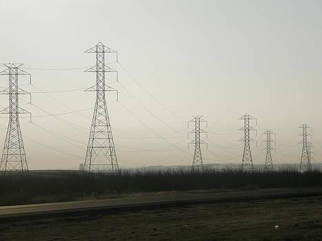 Poles by Lloyd  Silverman