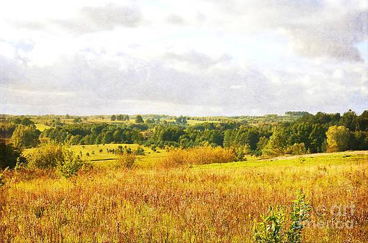 Polish Countryside by Christian LeBlanc