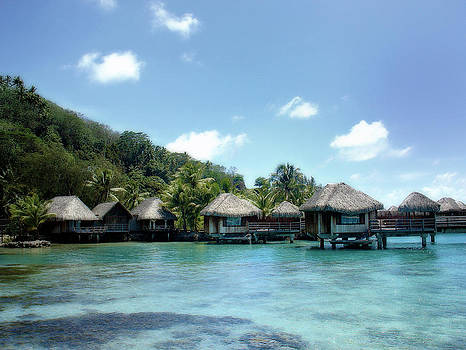 Julie Palencia - Polynesian Tranquility