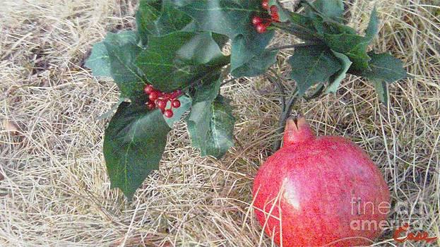 Feile Case - Pomegranate Love Forever