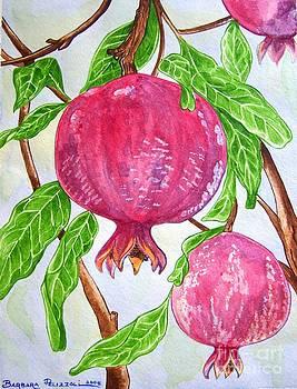 Pomegranates on a tree by Barbara Pelizzoli
