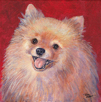 Pomeranian by Terry Albert