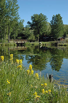 Pond and Bridge at Virginia City Montana by Bruce Gourley