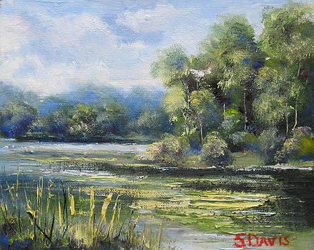 Pond At Kensington by Stephen Davis