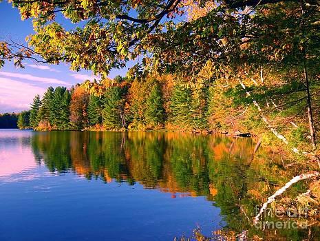 Christine Stack - Pond Autumn Reflection