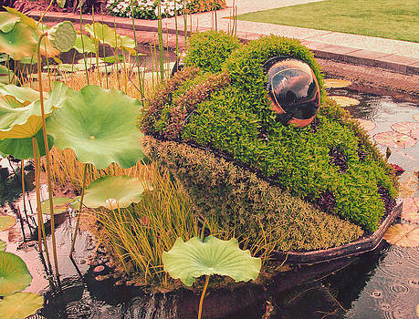 Pond Frog by Bob McGill
