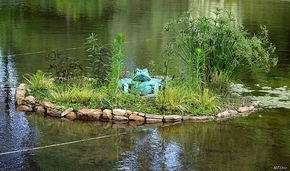 Maria Urso  - Pond Frog