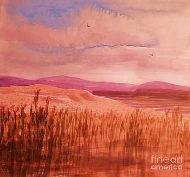 Pond In Drought by Suzanne McKay