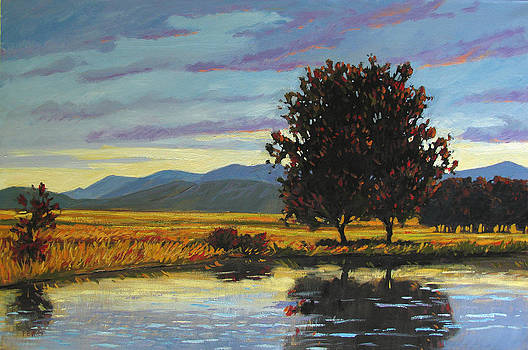 Pond Late Day IV by Patty Baker