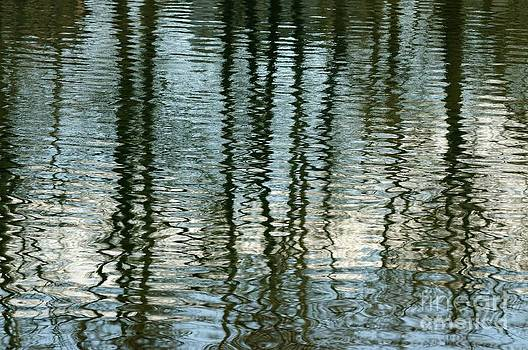 Vivian Christopher - Pond Ripples and Reflections