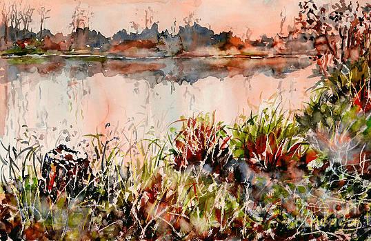 Ponds untold stories by Alfred Motzer