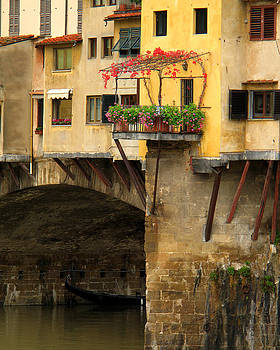 Ponte Vecchio Balcony and Ivy in Florence by Greg Matchick