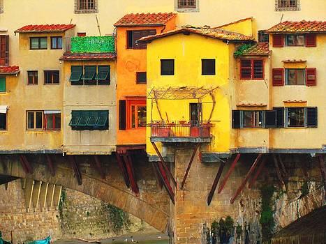 Ponte Vecchio by Francesco Plazza