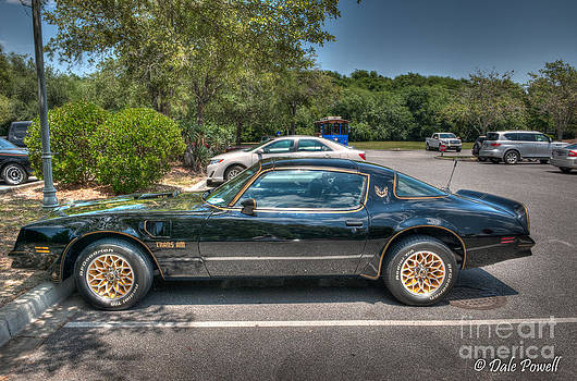 Dale Powell - Pontiac Trans Am
