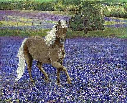 Pony in the Bluebonnets by Dana Spring Parish