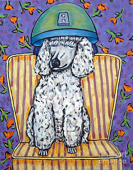 Poodle at the Salon by Jay  Schmetz
