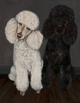 Poodles by Ellin Blumenthal
