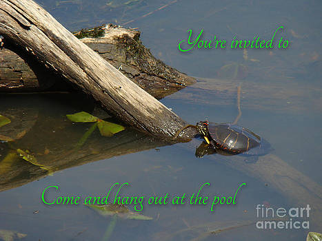 Mother Nature - Pool Party Invitation - Turtle on Log