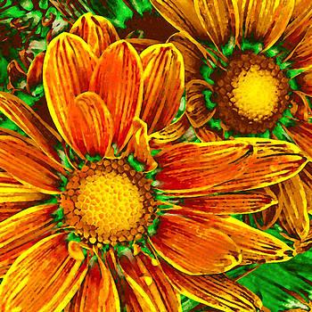 Amy Vangsgard - Pop Art Daisies 8