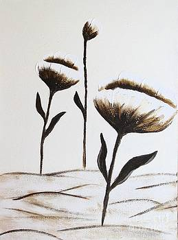 Barbara Griffin - Poppies Blooming in the Sunshine