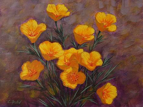 Poppies by Cheryl Fecht
