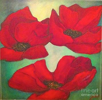 Poppies by Eszter Gyory