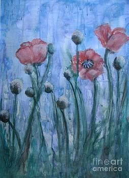 Poppies II by Marilyn  Sahs
