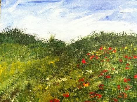 Poppies in Provence by Angela Puglisi