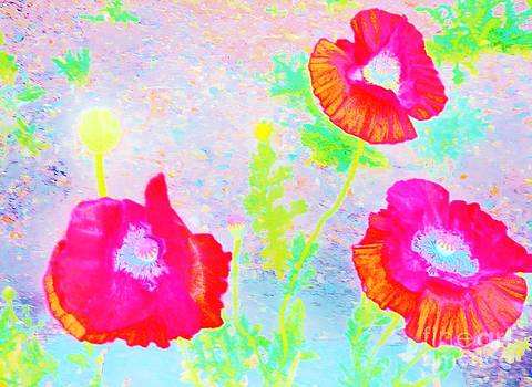 Poppies in Red by Sherry Stone