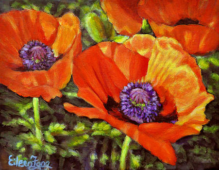 Poppies in the Light by Eileen  Fong