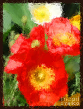 Poppies by Jack Gannon