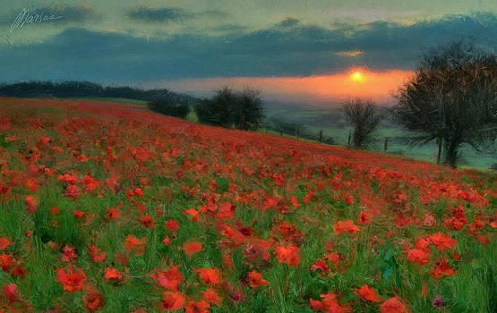 Poppies by Marina Likholat