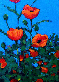 Joyce Geleynse - Poppies on Blue