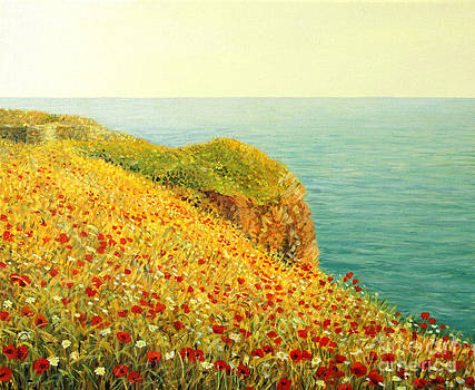 Poppies on Kaliakra by Kiril Stanchev