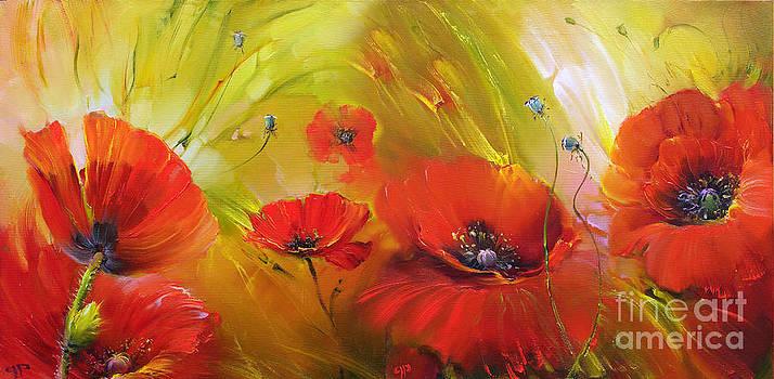 Poppies by Roman Romanov
