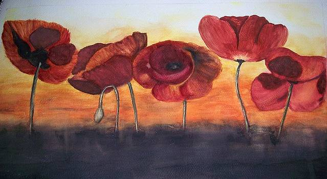 Poppies by Tammy McClung