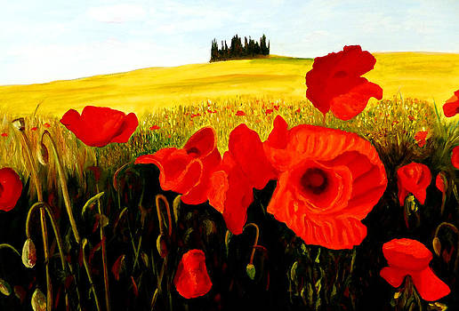 Poppies Under The Tuscan Sun by JoeRay Kelley