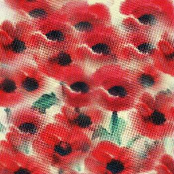 Poppies by Yumi Kudo
