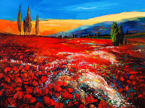 Poppies'field by Ivailo Nikolov