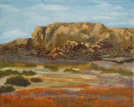Poppy Cliffs by Terry Sonntag