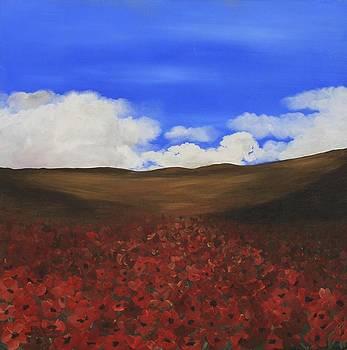 Poppy Field by Amy Neal