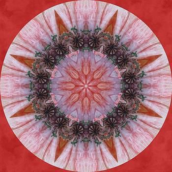 Poppy in My Garden in a Circle by Trina Stephenson