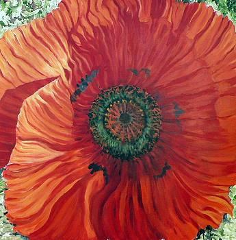 Poppy by Kathy Meredith